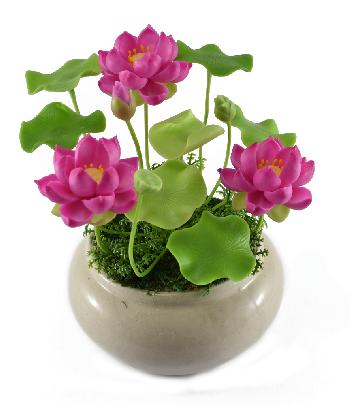 Lotus (Small)